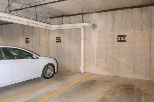 807 Asa Gray Drive #203 - Photo 41