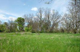48002 Timber Park Court Belleville, MI 48111 Photo 5