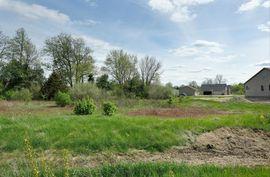 48123 Timber Lane Belleville, MI 48111 Photo 3