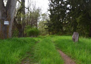 0 Knight Road Grass Lake, MI 49240 - Image 1