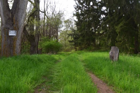 0 Knight Road Grass Lake, MI 49240