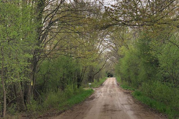 0 Maple Road - Photo 8
