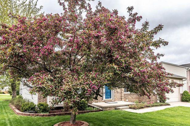 5941 Cottonwood Drive - Photo 47