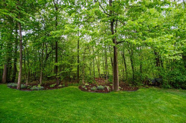 5927 Cedar Ridge Drive - Photo 58