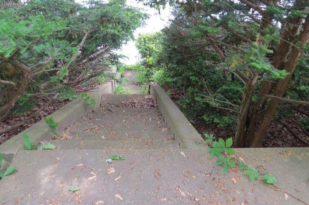 7612 Tharp Drive - Photo 11