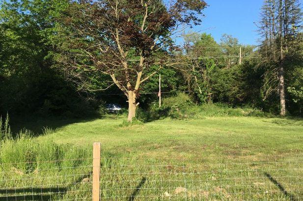 13671 Rawsonville Road - Photo 2