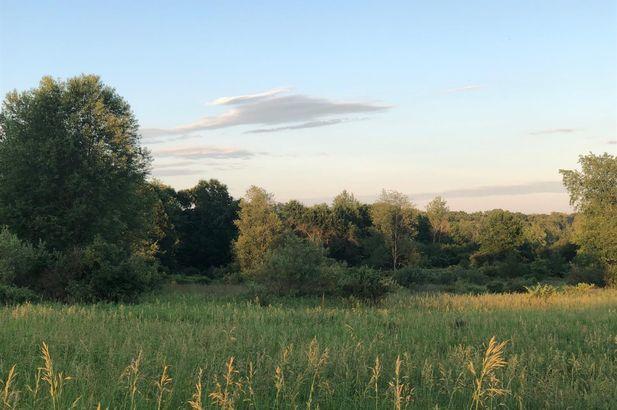 5404 McGuiness Road - Photo 8