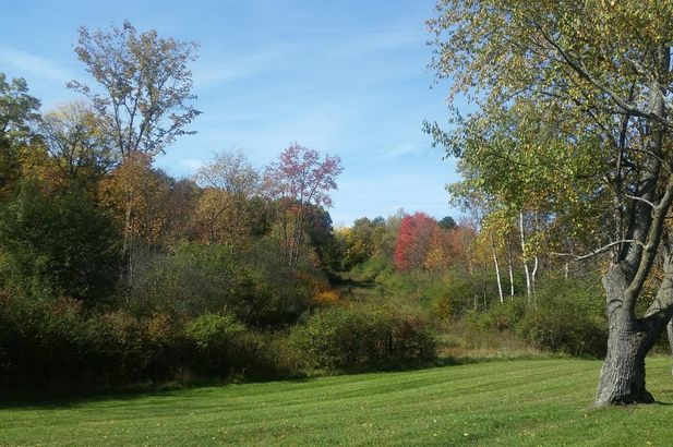 4715 Ridge Creek Lane - Photo 2