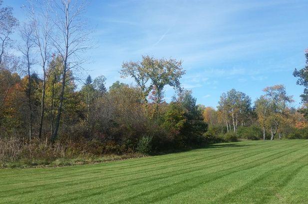 4715 Ridge Creek Lane - Photo 6