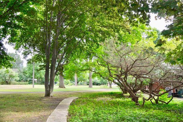 20766 Kennoway Circle - Photo 6