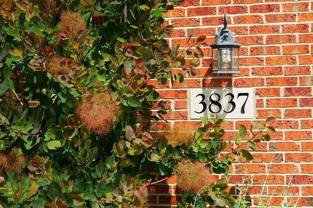 3837 Landin Trail - Photo 2