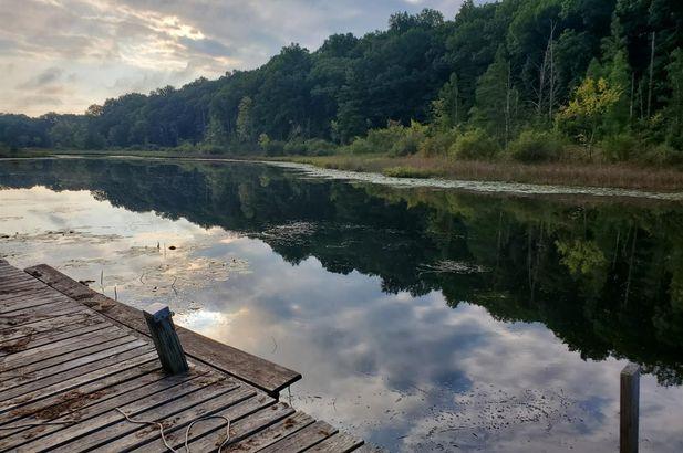 11701 Joslin Lake Rd - Photo 48