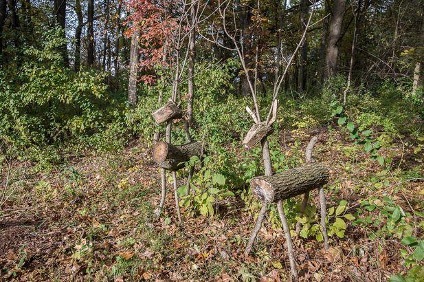 8510 Oak Ridge Trail - Photo 74