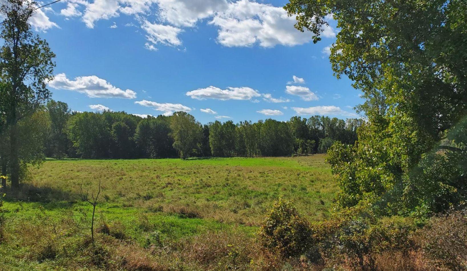 0 Grass Lake Road - Photo 2