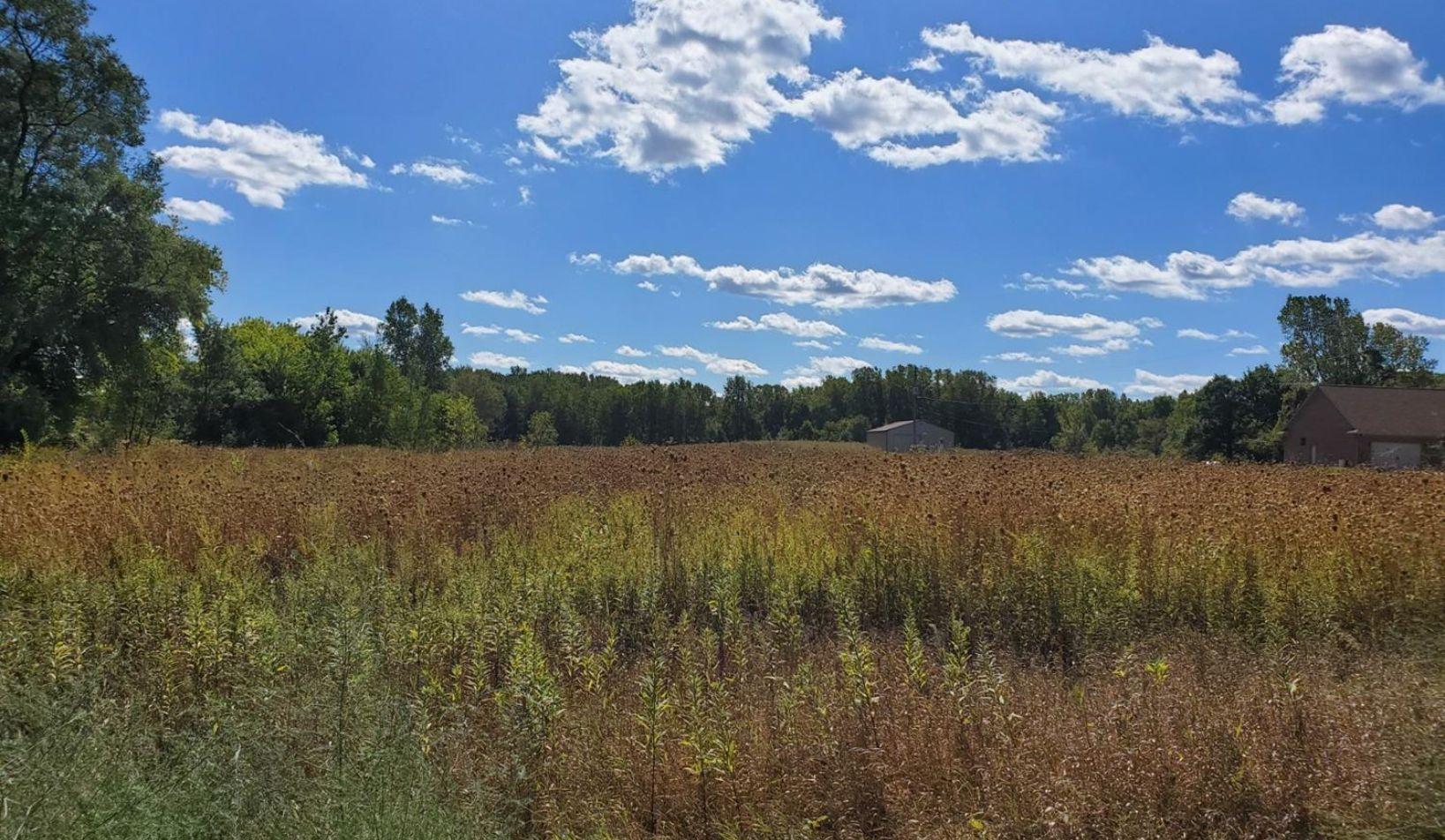 0 Grass Lake Road - Photo 4