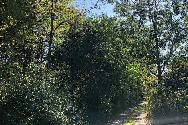2230 Kalmbach Road - Photo 61