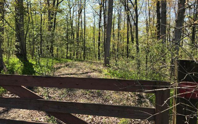 5171 Pleasant Lake Road - photo 2