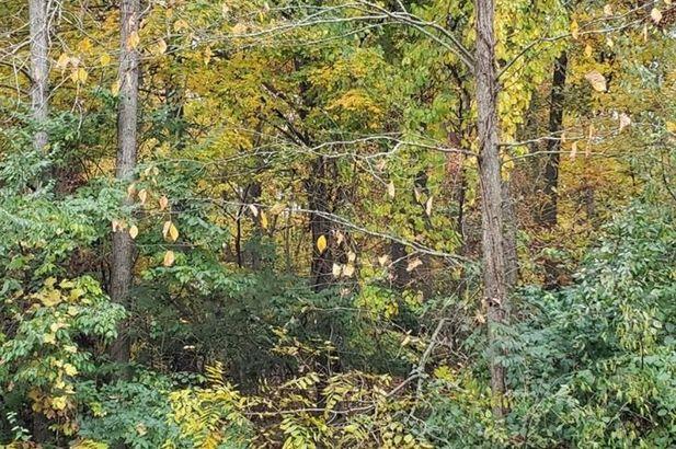 1536 Stonehaven Road Ann Arbor MI 48104