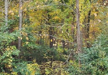 1536 Stonehaven Road Ann Arbor, MI 48104 - Image 1