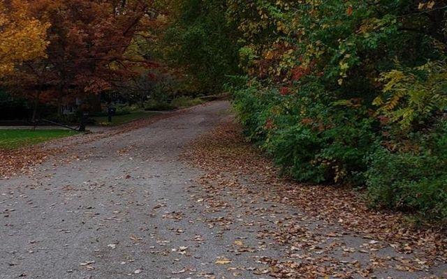 1536 Stonehaven Road - photo 2