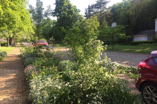 1570 Woodland Drive - Photo 30