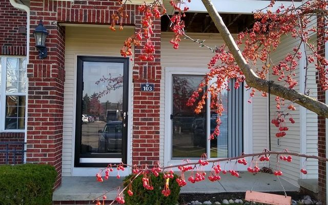 229 Scio Village Court #103 Ann Arbor, MI 48103