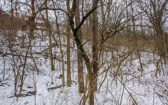 3785 Fox Hunt Drive - photo 51