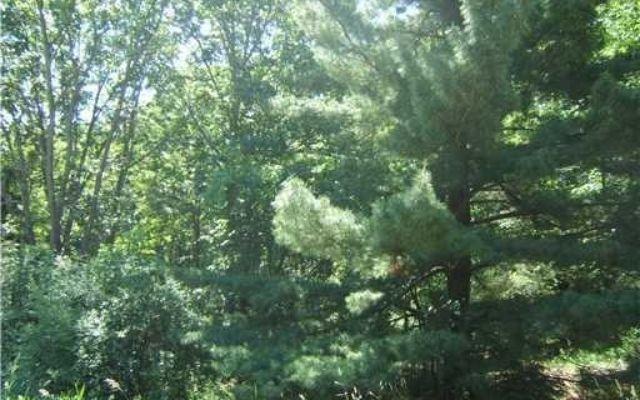 0 Wald Strasse - photo 2