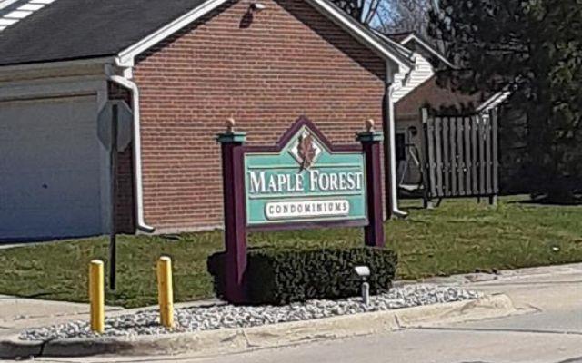 28016 Maple Forest Boulevard - photo 1