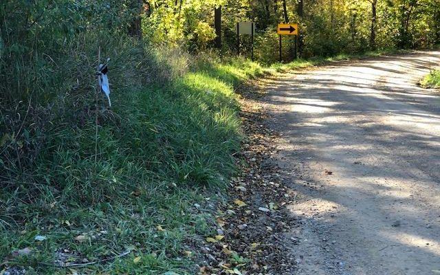 11191 Bemis Road - photo 3