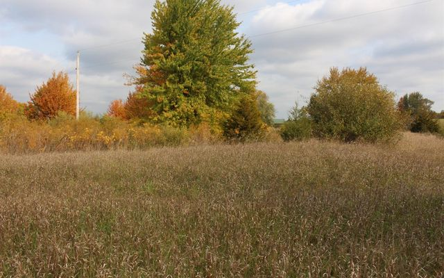 0 Reiman Parcel B Road Grass Lake, MI 49240