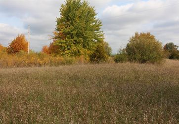 0 Reiman Parcel C Road Grass Lake, MI 49240 - Image 1