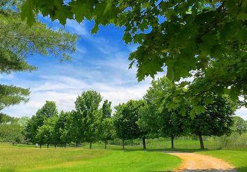 18580 W Grass Lake Road Manchester, MI 48158 - Image 1