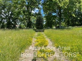 8837 Lamoreaux Road - photo 3
