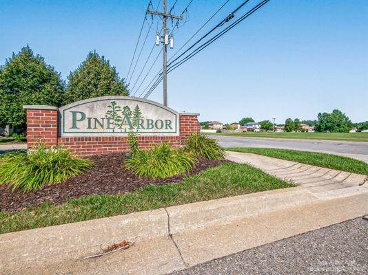 23966 White Pine Street - photo 14