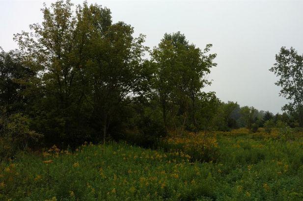 10557 Island Lake Road - Photo 4